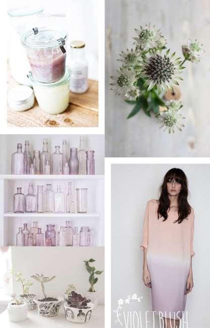 violet blush_coco and mingo